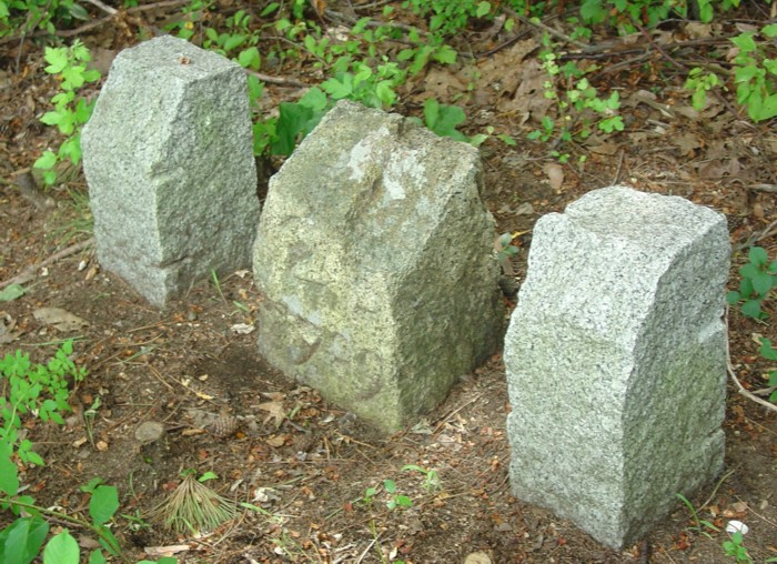 Ipswich MA Milestone Boston 25 Route 1A (1709)