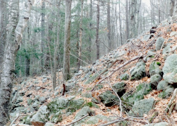Sandown-Nh-Hillside-Cairn